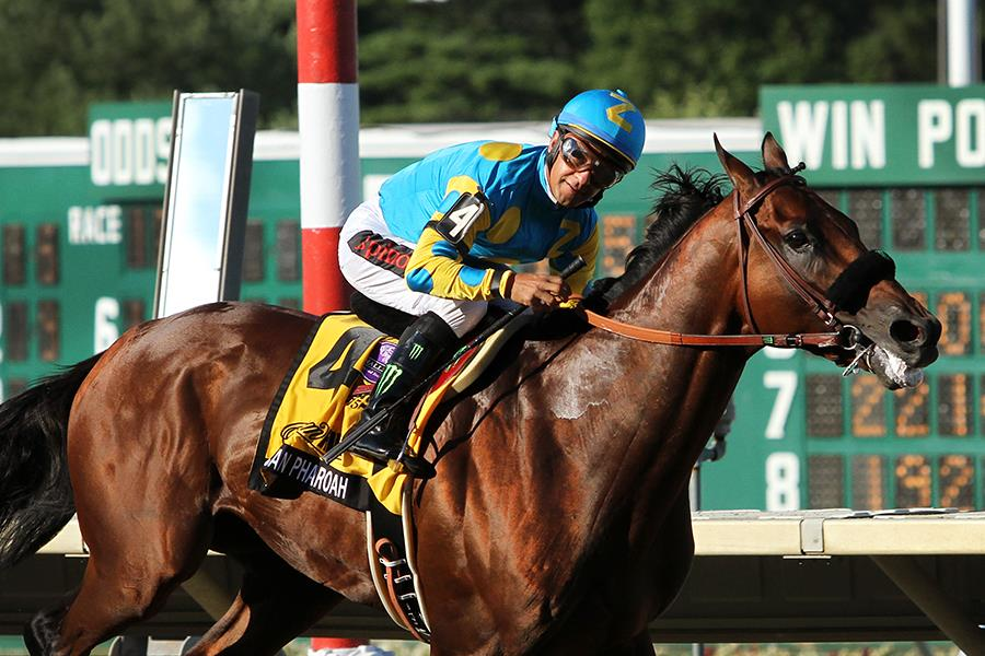 American Pharoah dominates Haskell Inv. (G1) title=