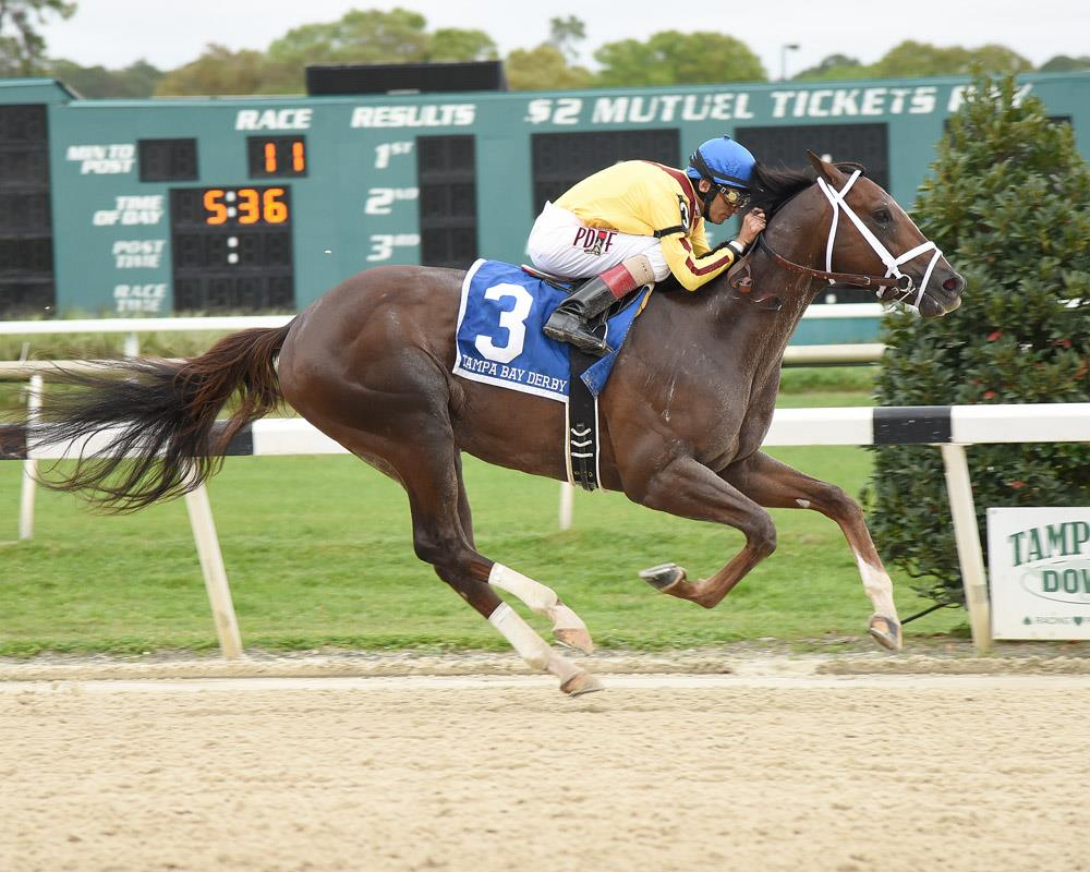 Carpe Diem dominates $350,000 Tampa Bay Derby (G2)