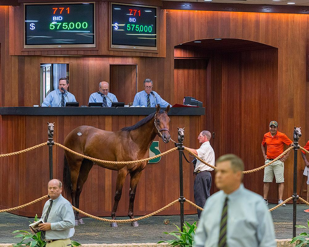 Super Saver colt equals sale record at OBS title=
