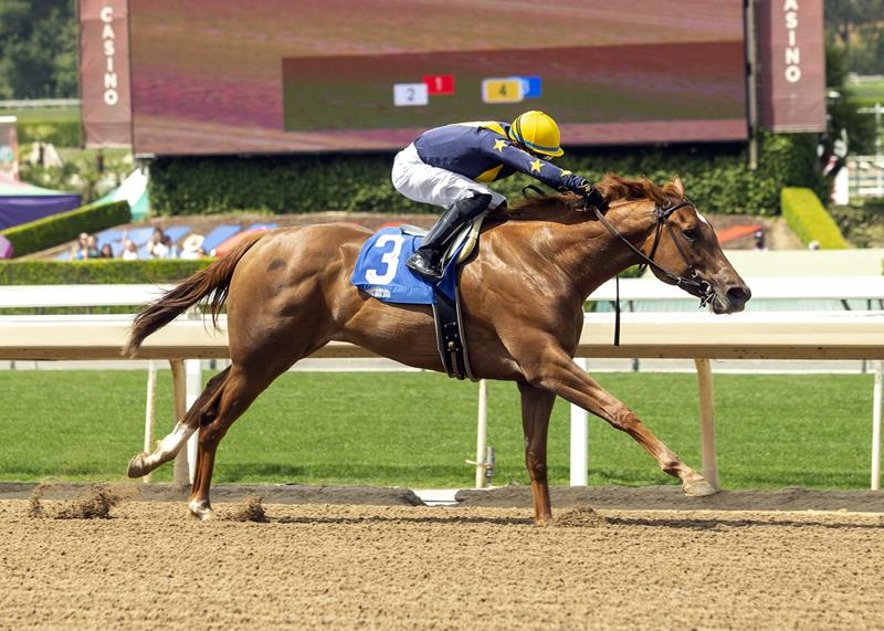 Speightstown's Astute wins Angels Flight S. in 2021 debut title=