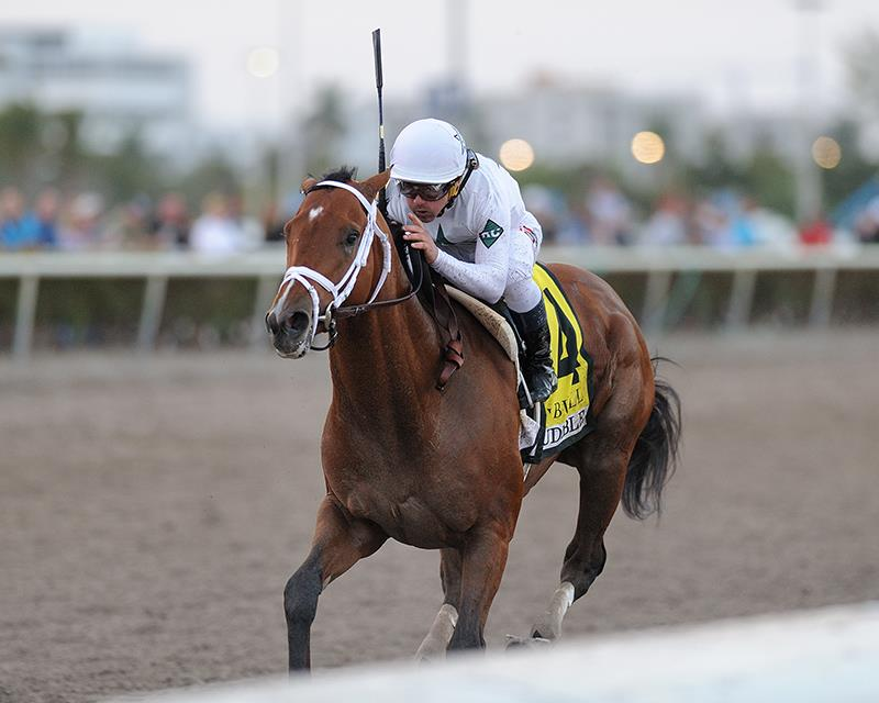 Audible captures Holy Bull S. (G2) in first stakes start title=