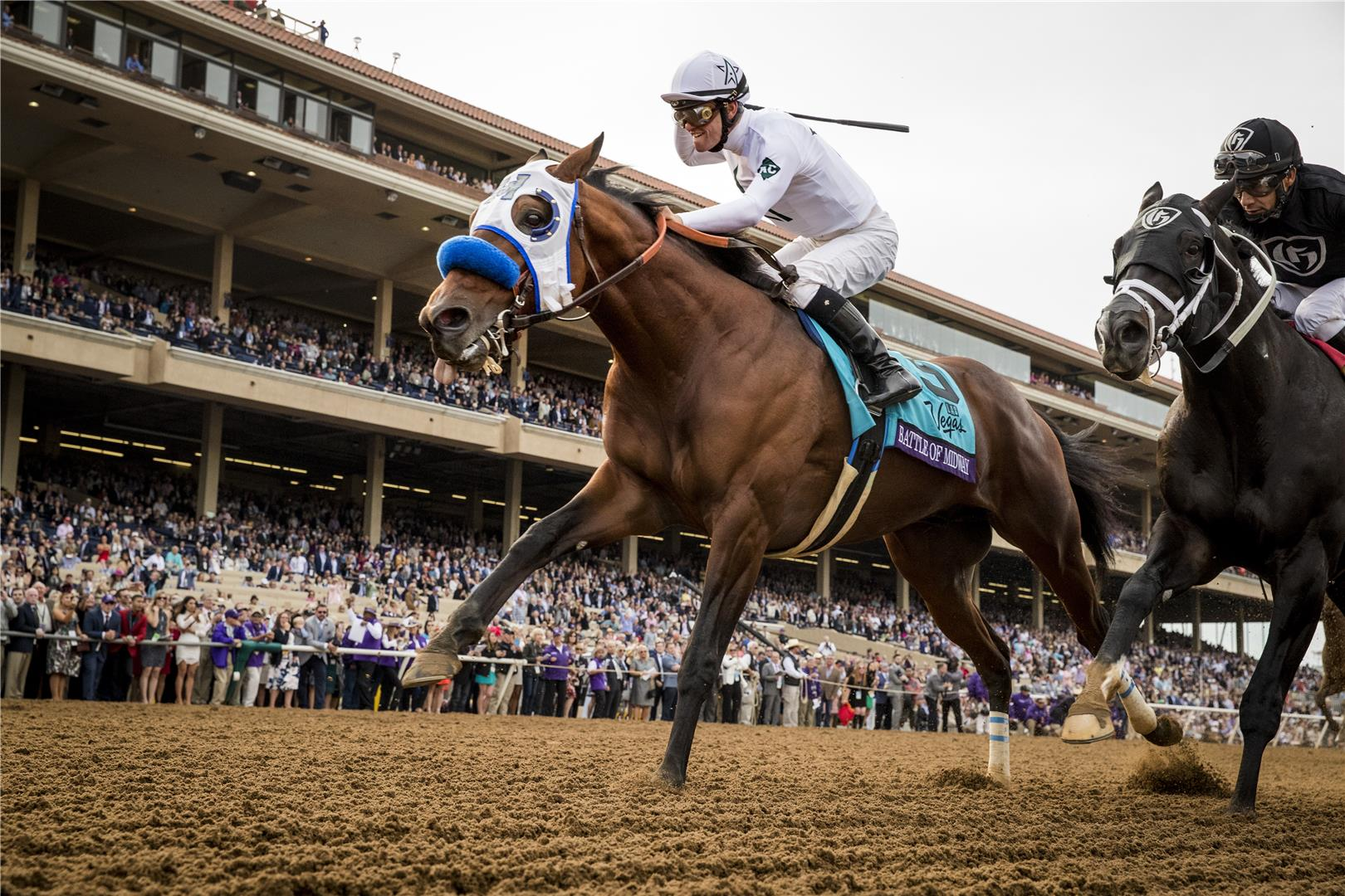 Battle of Midway, Breeders' Cup Dirt Mile (G1) winner & Classic-placed son of Smart Strike, retires to WinStar title=