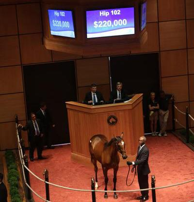 Bodemeister yearlings average $150,000 at Fasig-Tipton July sale title=