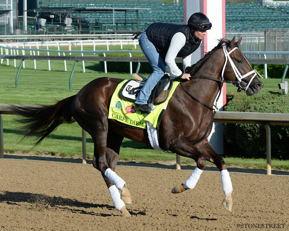 Carpe Diem among the favorites for Kentucky Derby 141