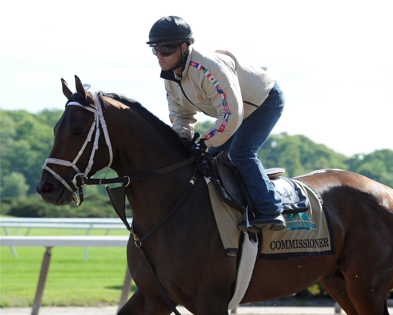 A.P. Indy's 3yo colt Commissioner trained well up to his runner-up performance in the Belmont S. (G1)