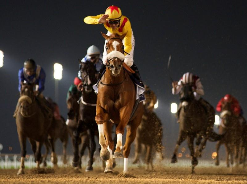 Distorted Humor's Surfer reaches new heights in Group 2 Al Maktoum Challenge