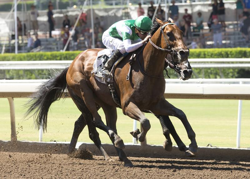 Colonel John's Dalmore comes up big in Grade 3 Affirmed S. title=