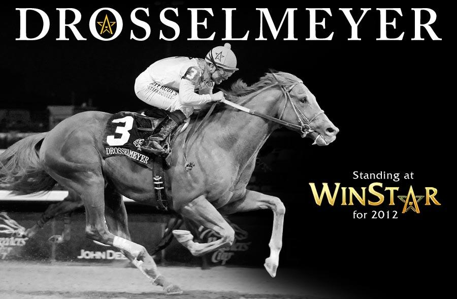Drosselmeyer retired, to stand at WinStar for $17,500 title=
