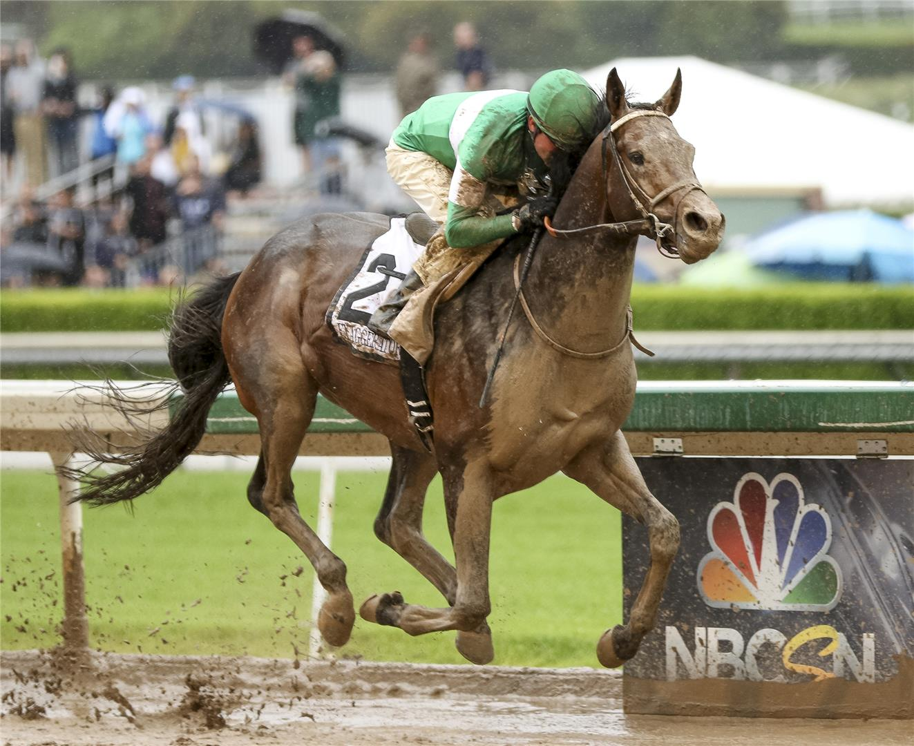 Santa Anita Derby (G1) winner Exaggerator to stand at WinStar upon retirement title=
