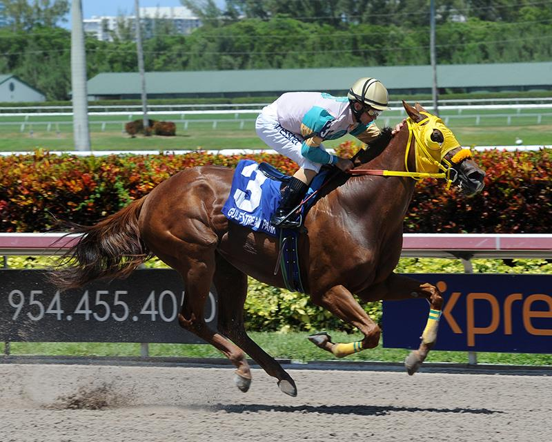 Flutterby flies to victory at Gulfstream Park title=