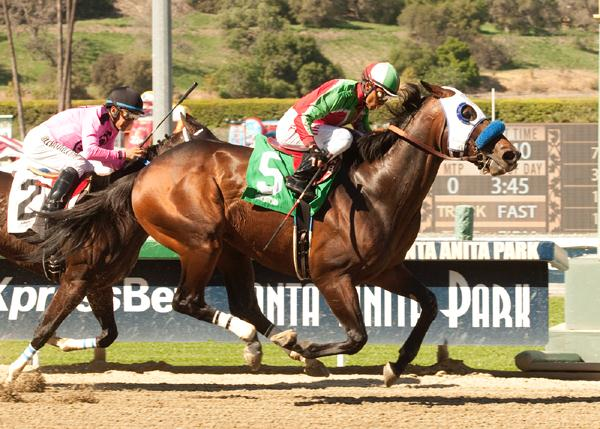 Fury Kapcori holds off Appealing Tale to take the Santana Mile S.