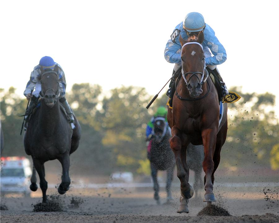 Haynesfield takes $200K Empire Classic