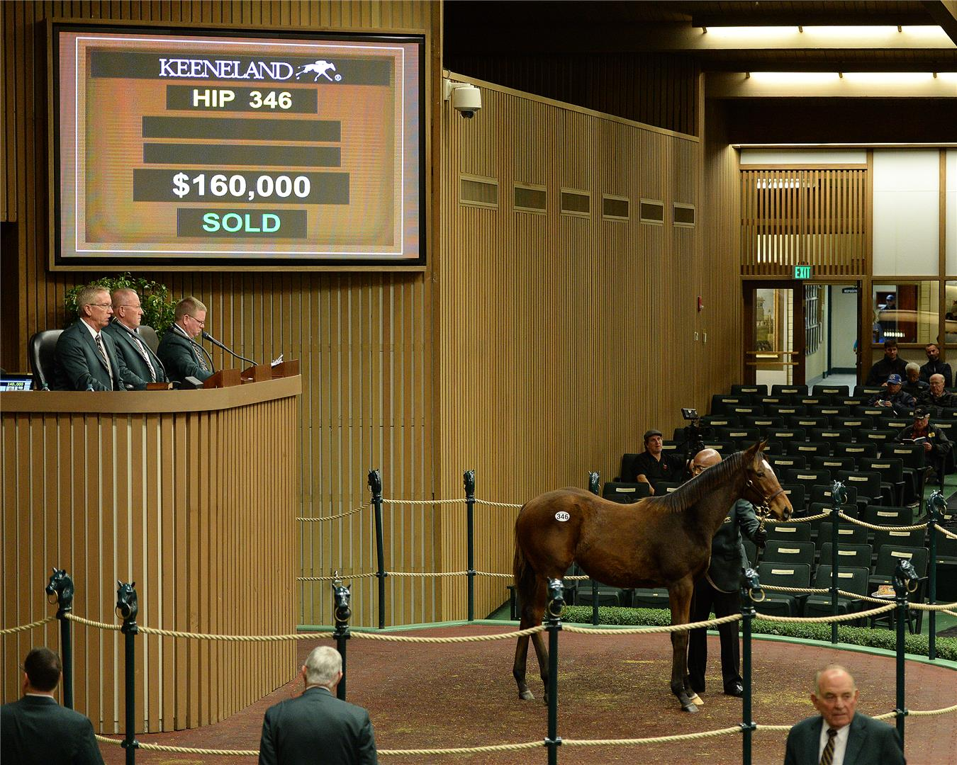 Fed Biz's first weanling sells for $160,000 title=