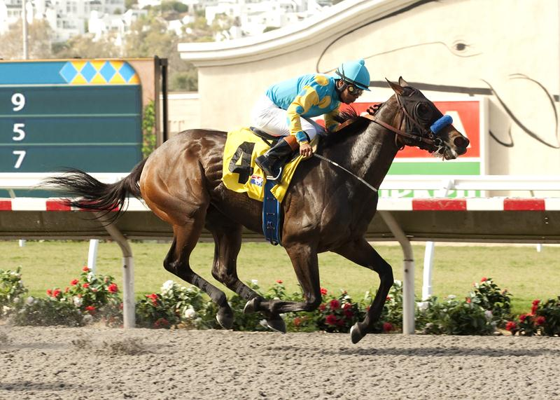 Jojo Warrior shows her heels in the Grade 3 Torrey Pines S.