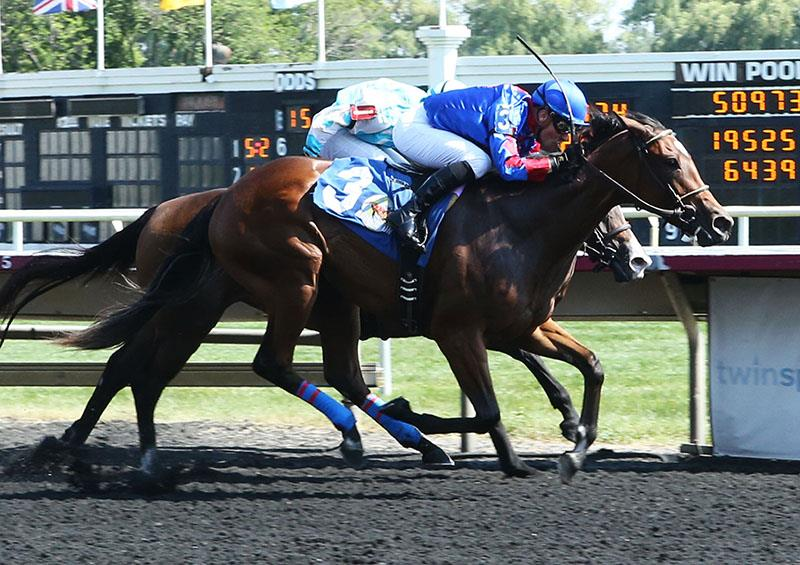 Fed Biz filly takes debut at Arlington, second winner for sire title=