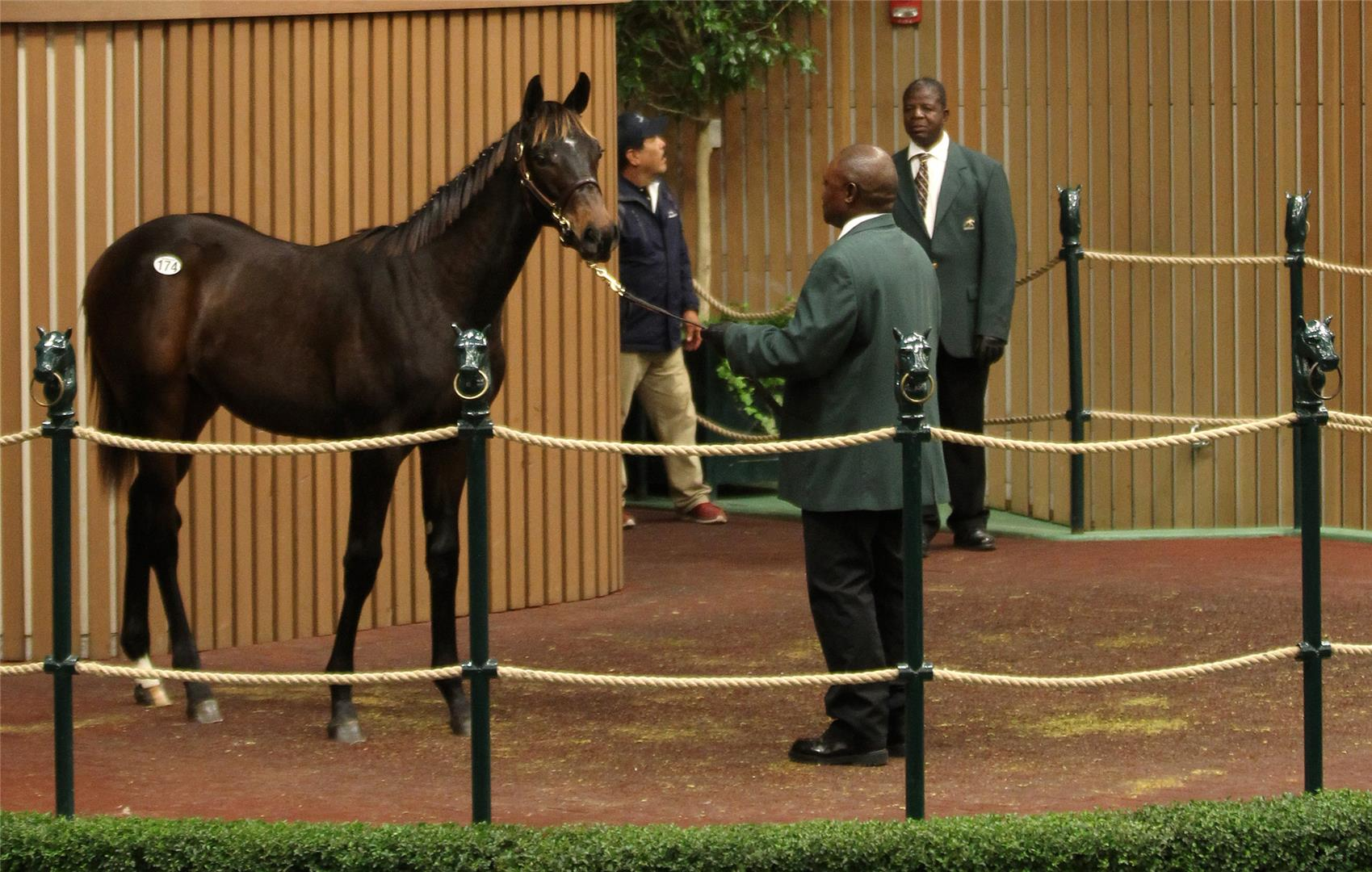 Pioneerof the Nile weanling fetches session-topping $600,000 at KEENOV title=