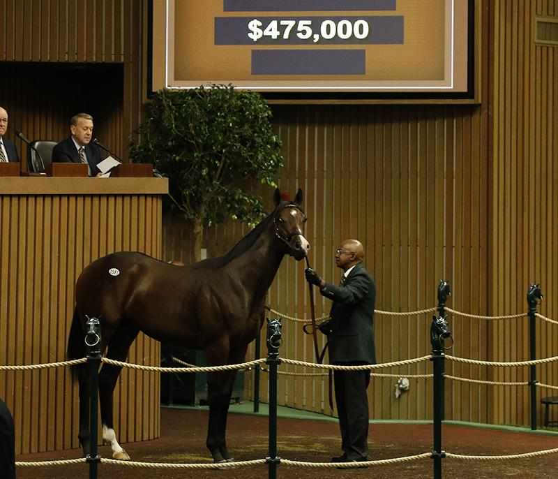 Pioneerof the Nile: Keeneland September day 3 another blockbuster title=