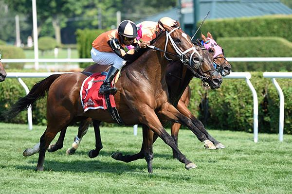 Shore Runner comes out on top in $100K Lucky Coin S. title=