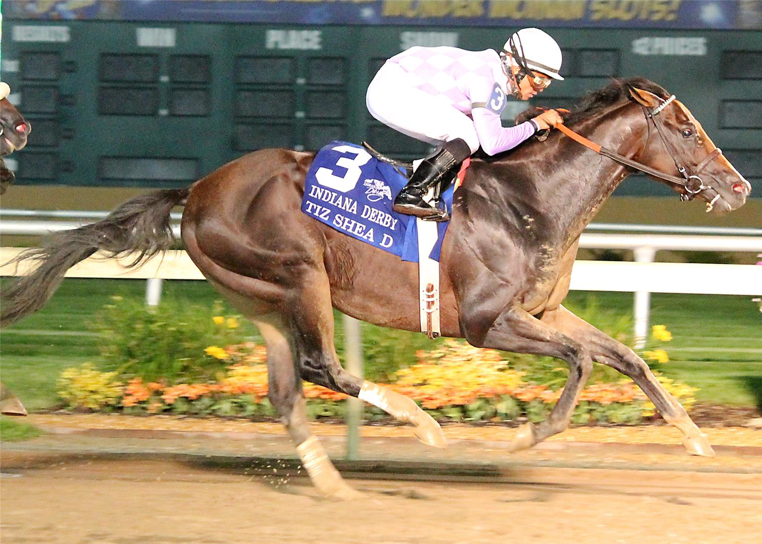 Tiz Shea D scampers to rousing victory in $500,000 Indiana Derby (G2) title=