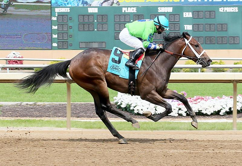 Two Last Words is first winner for WinStar Farm's Commissioner title=