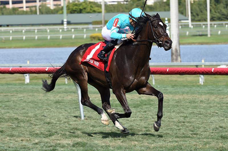 Tammy the Torpedo fires big in Suwanee River S. (G3) title=