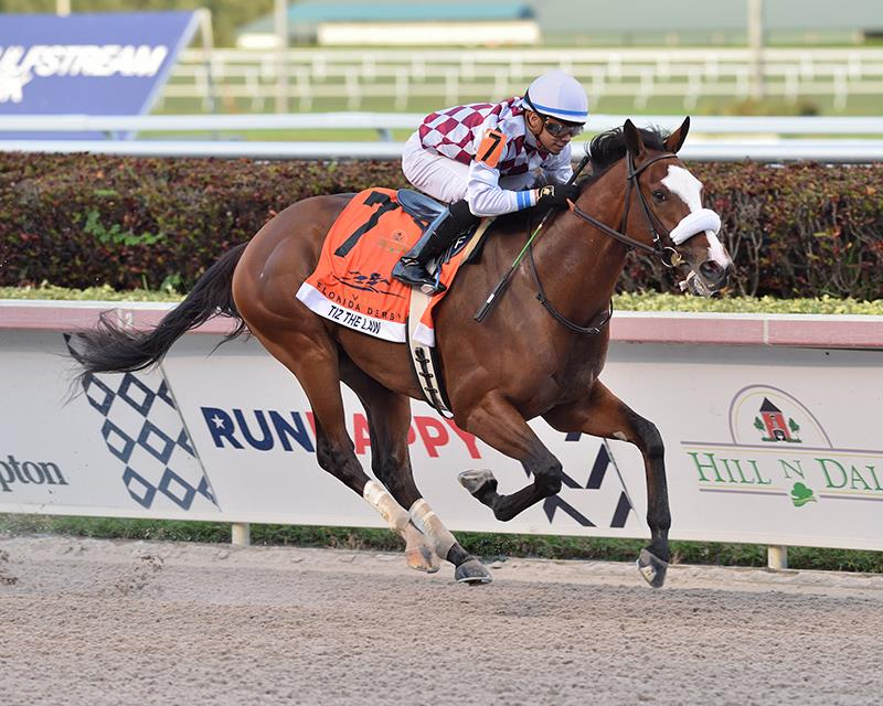 Constitution's Tiz the Law the class of the Florida Derby (G1) field title=