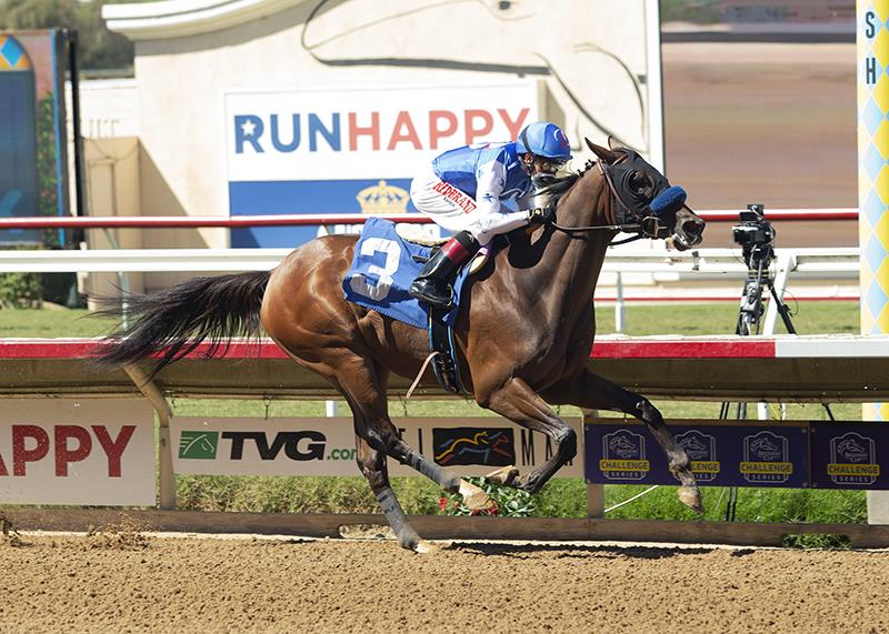 $700,000 Distorted Humor 2yo takes Del Mar debut in style title=