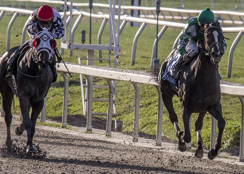 Venus Valentine lands post 10 for Kentucky Oaks (G1) title=