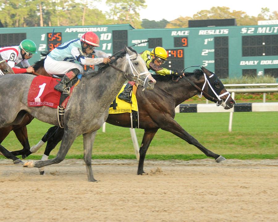 Vinceremos battles to victory in the G3 Sam F. Davis S.