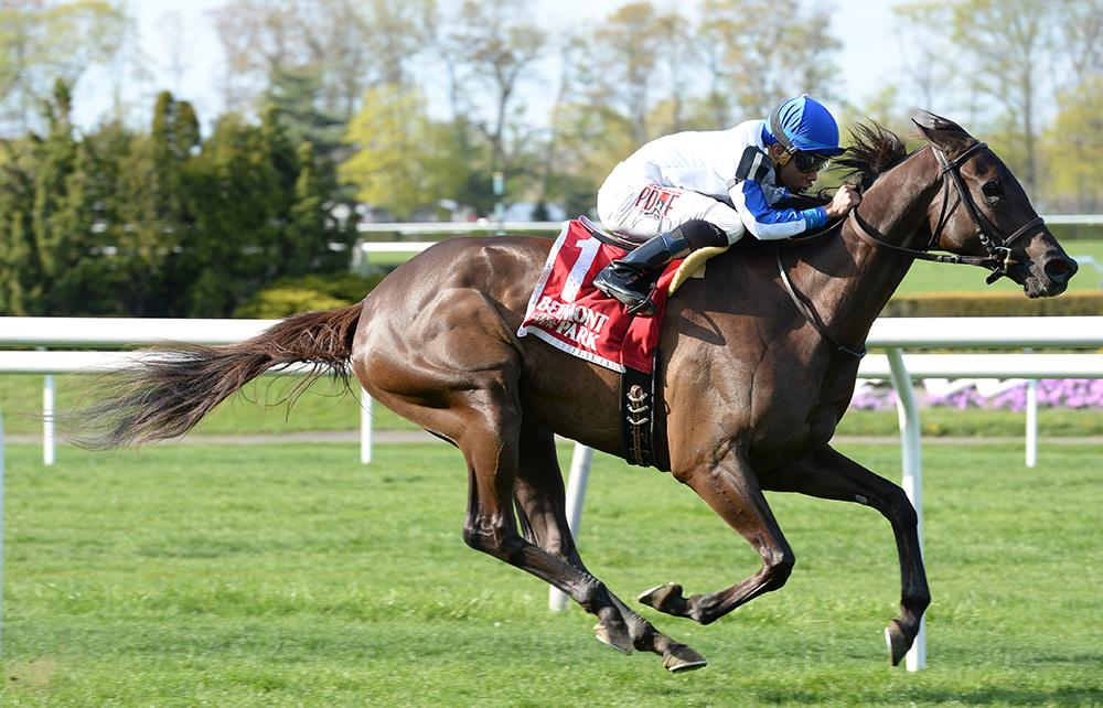 More Than Ready filly cruises in $100,000 License Fee S.