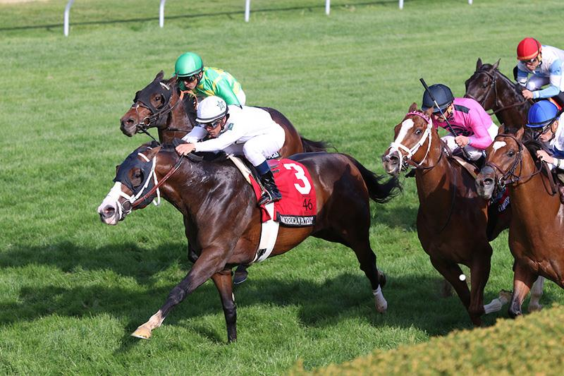 American Patriot soars to victory in Grade 1 Maker's 46 Mile title=