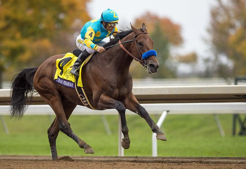 American Pharoah spectacular in Breeders' Cup Classic (G1) title=