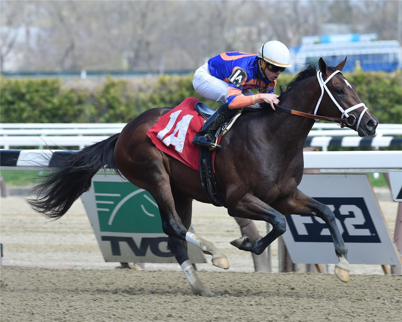Overanalyze sires first winner in $100,000 MdSpWt at Aqueduct title=
