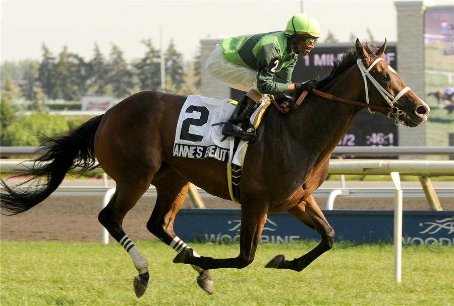 Artie Schiller filly makes the grade in Colleen S. (G3) title=