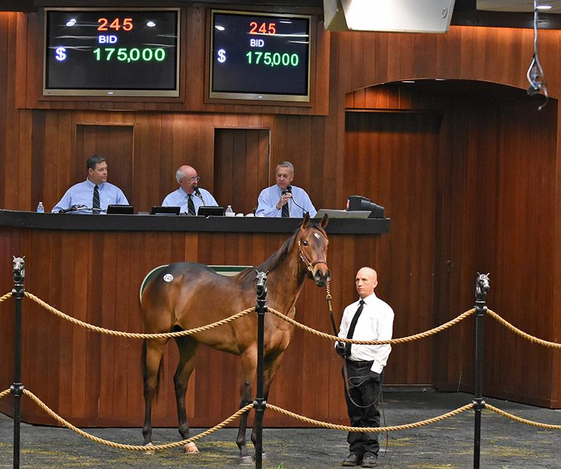 Artie Schiller: OBS April sale Day 1 report title=