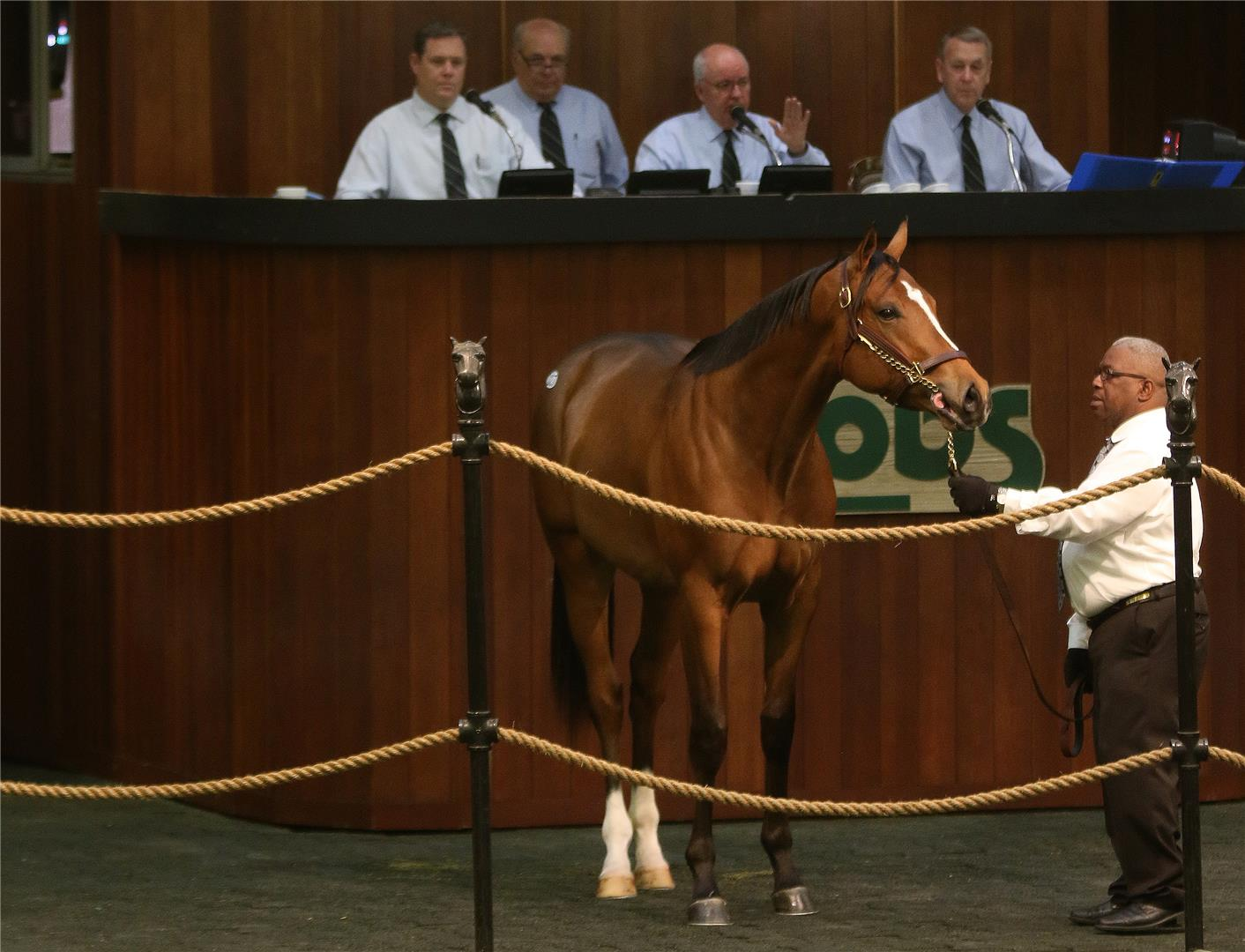 $435,000 colt tops Bodemeister offerings during Day 1 of OBS March sale title=