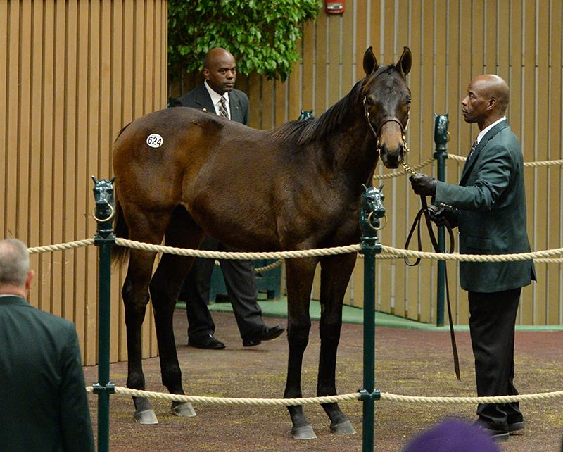 Bodemeister colt realizes $195K Tuesday at Keeneland title=