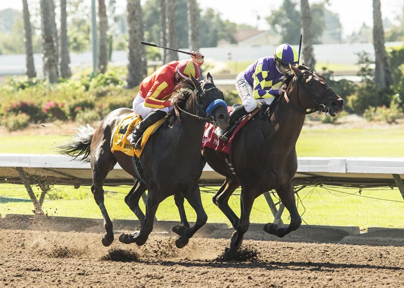 Bodemeister's Once On Whiskey prevails in Los Al Derby (G3) thriller title=