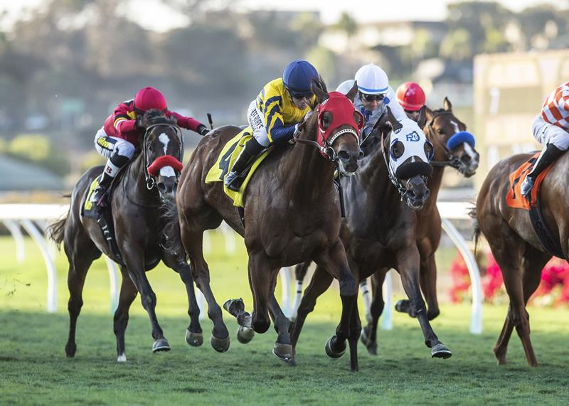 Risky Proposition finishes with flourish to win Del Mar's Let It Ride S. title=