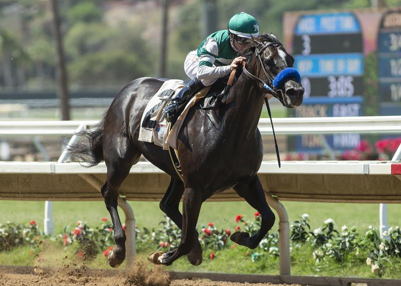 Bodemeister filly gets first graded stakes victory in Del Mar's Rancho Bernardo (G3) title=