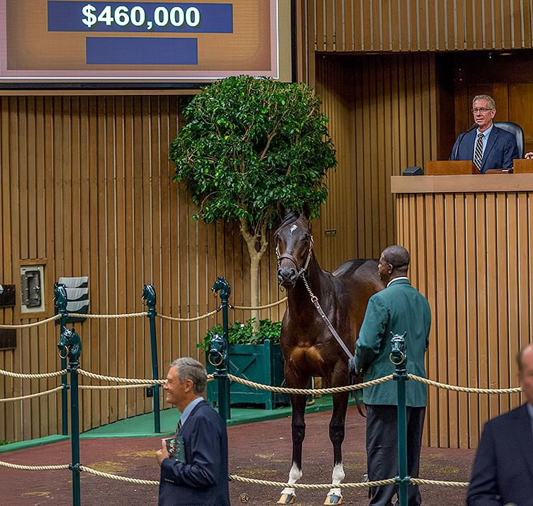 Day 1 at Keeneland September sale yields big numbers for Bodemeister title=