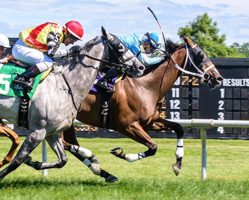 Bodemeister's O Dionysus sets course record in Cape Henlopen S. title=