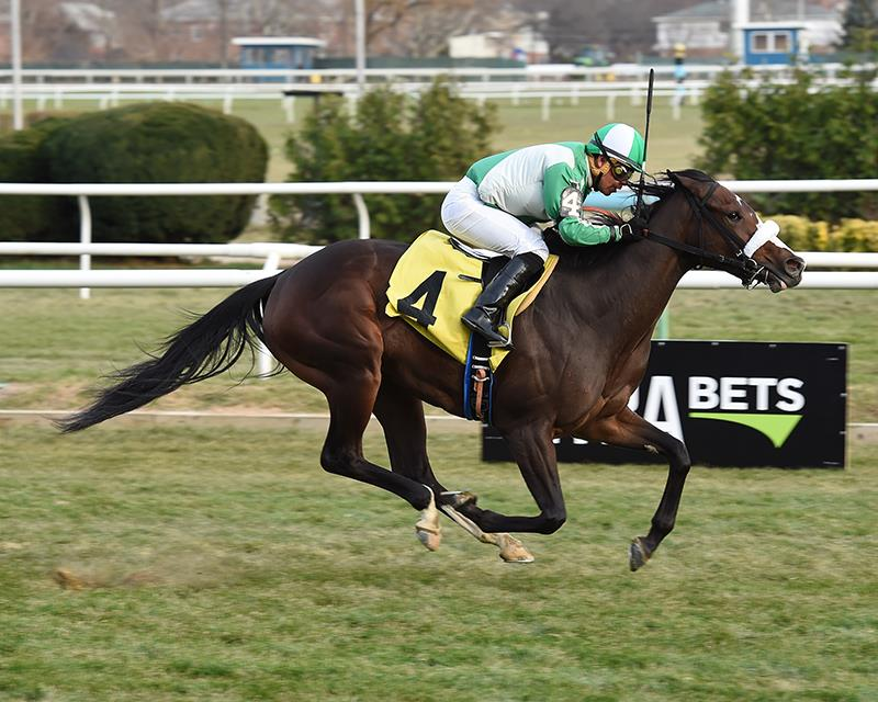 Bodemeister filly storms home in turf unveiling title=
