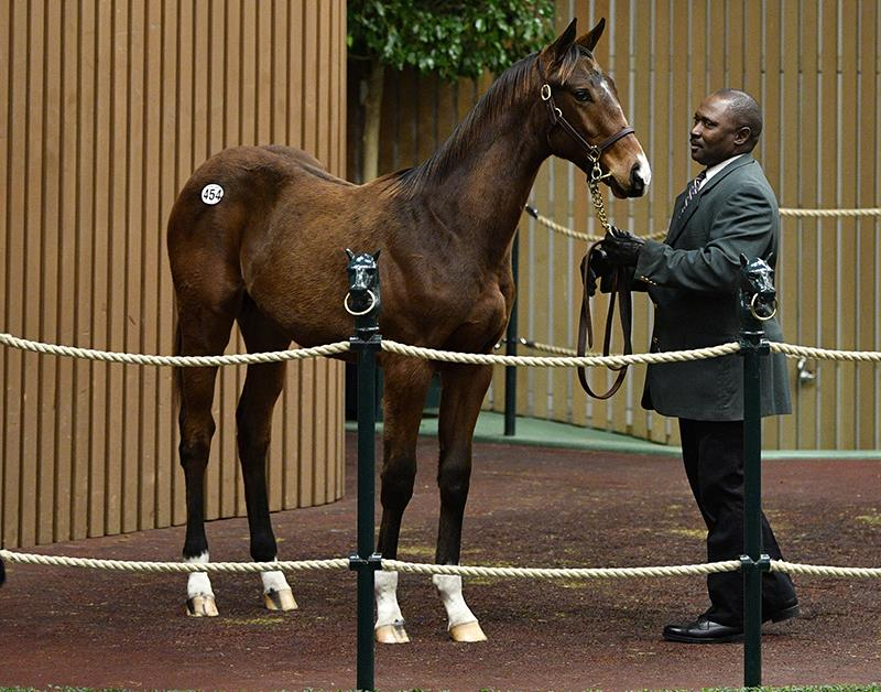 $320,000 weanling highlights Thursday at Keeneland for Carpe Diem title=