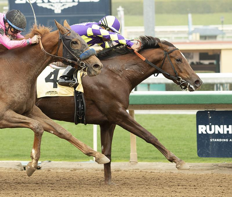 Carpe Diem filly wins main track debut at Santa Anita Park title=