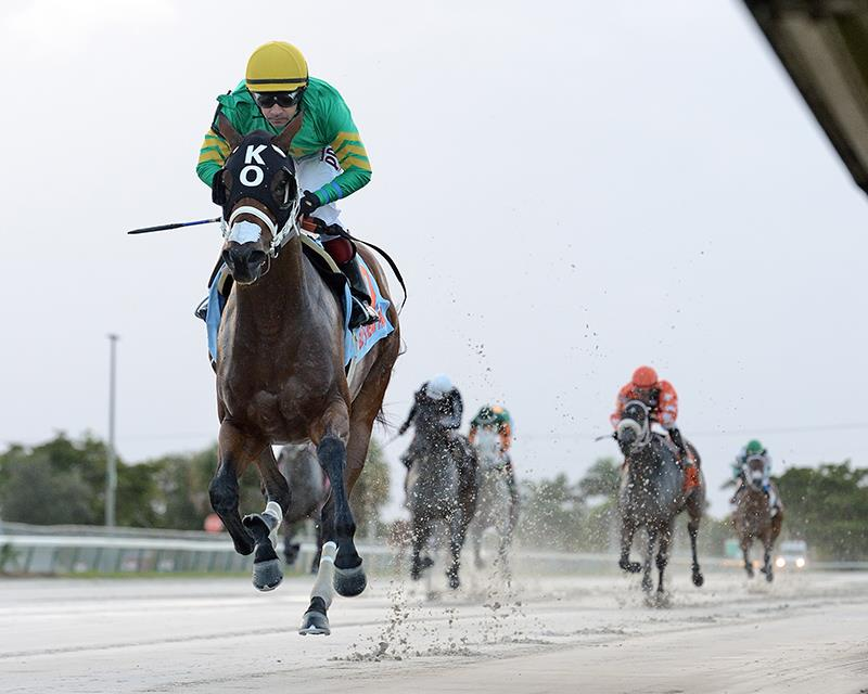 Carpe Diem's Thissmytime cruises by double-digits in Millions F&M Turf Preview title=