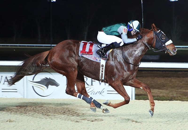 Carpe Diem's Wait for Nairobi wins Cincinnati Trophy in stakes debut title=