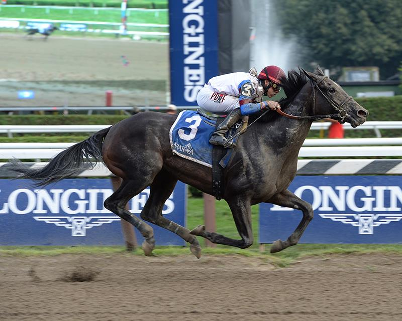 Pioneerof the Nile filly cruises by six in $100,000 Summer Colony S. title=