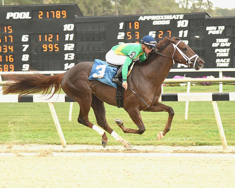 Congrats filly super-sharp in Tampa score title=