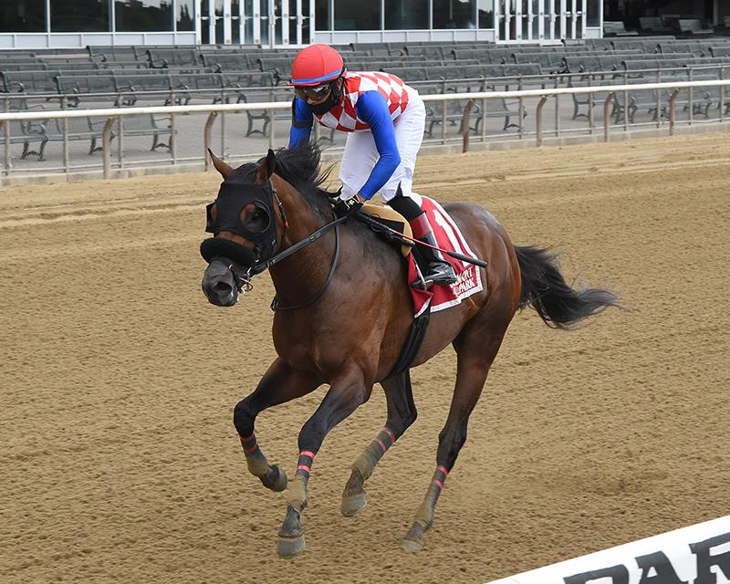 Congrats colt wins Easy Goer S. by nearly 20 lengths title=